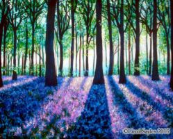 Bluebell Woods by FaerySayles