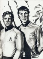 Kirk and Spock by 2BeAnnounced