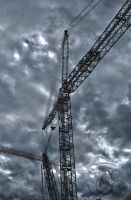 The Crane by Shayele82