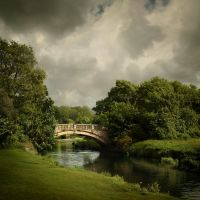 Pollok Park... by Alcove