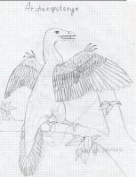 Archaeopteryx by Dino-drawer