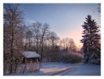 Winterway by Pajunen