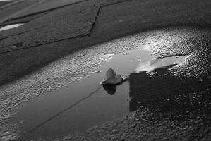 Left in a puddle by DJ-Telexture