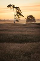 Morning silence by Intrepidity87