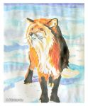 Fox In Sunlight (watercolor painting) by eyeqandy