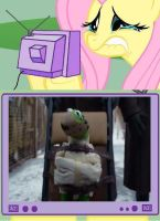 Fluttercry meme-Kermit brought to Gulag by YuiHarunaShinozaki