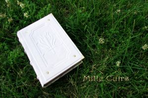 DragonAge white book. by MilleCuirs