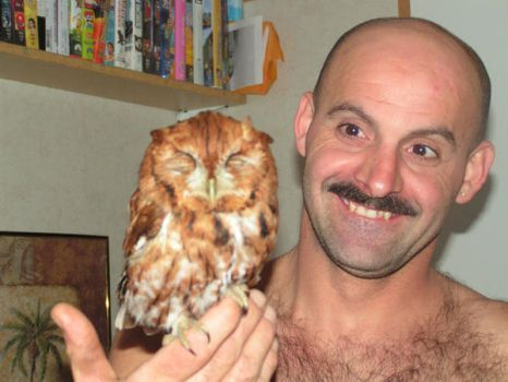 Rescued Owl by Granny-Chobit