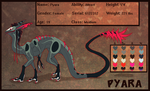 CE - Pyara's Reference by Wyrmin