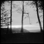 Holga sunrise - May 2011 by pearwood