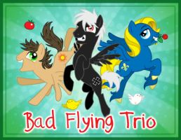 Bad Flying Trio by Birvan