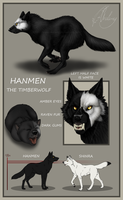 CS - Hanmen by Chaluny