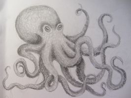 Octopus sketch by KLN-loves-fish