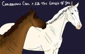 Caribbean Cool x SB The Ghost Of You by Geronimo24