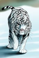 White Tiger by janusmemory