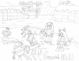 Team Awesomness in Seadide Hill by SonicFreak4455