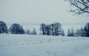 Snowscape Stock 50 by Sed-rah-Stock