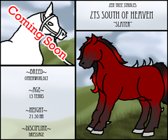 ZTS South Of Heaven by KaurauTheFox