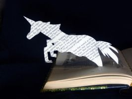 Bookish Unicorn by ShaylynnAnn