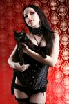 black cats by Luria-XXII