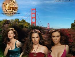 charmed san francisco by charmed556677