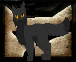 Yellowfang a cat of two clans by comptonja