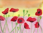 Poppies by MacabreWeb