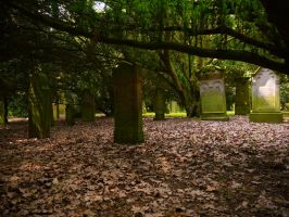 Old Forest Cemetery 2012 16 by Dragoroth-stock