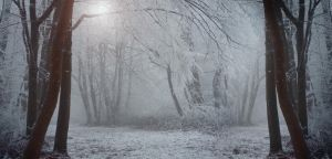 Ice Queen's Empire by ildiko-neer