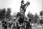 RUGBY by albertacci