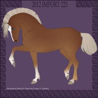 Nordanner Import 223 by MissStylish