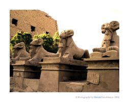 Karnak Temple by specialsally