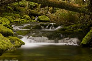 Parker Creek by 11thDimensionPhoto