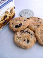 miniature Choc Chip Cookie 1-4 by Snowfern
