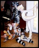 Cats costumes 2 by Rollwurst