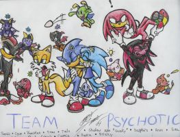 Team Psychotic by SonicMaster23