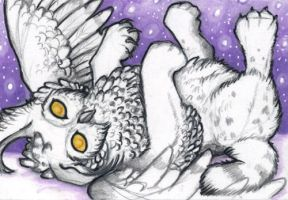 ACEO: The Snow Like Stars by vladimirsangel