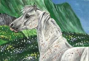 Welsh Pony ACEO by Fire-n-ash