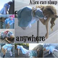 Alice Can Sleep Anywhere by MimiReaves