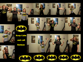 Oh the Batman Fans.... by TheFossilSisters