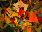 Many paper cranes by Chrissice