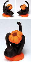 Black Cat With Pumpkin by Carabear94