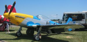 P51 Mustang 1 by ToeTag