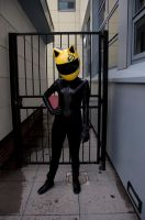 Celty Sturluson by AkraruPhotography