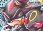 Shadow and Umbreon by Pichu-Chan