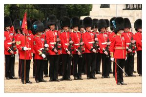 Trooping The Colour - 2 by syphonvector