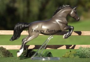 Breyer Stablemate by WolfWhisper