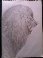 Lion of the Tribe of Judah by ll-Bisto-ll