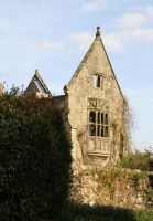 Nymans 40 - Stock by GothicBohemianStock