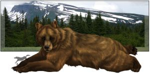Grizzly Sow by Nylak